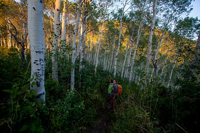 We make it to the Aspens and took some pictures before we turned around and it got dark.  We saw many people running the trail so we decided to run back too!