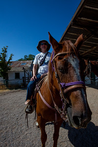 On our horses.