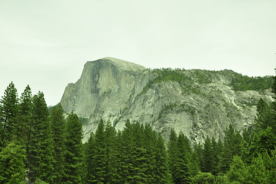 In Yosemite with the Puglisis