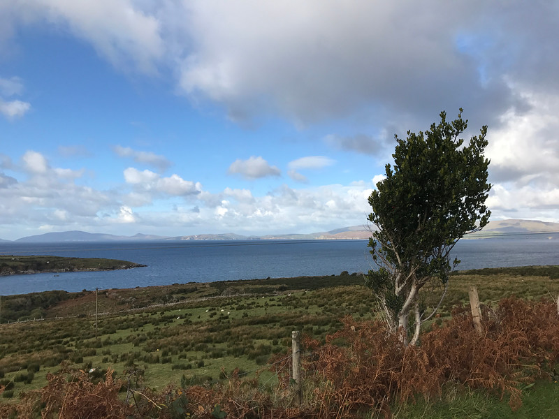 And now our trek around the Ring of Kerry.  Warning:  not for the feint of heart driver!