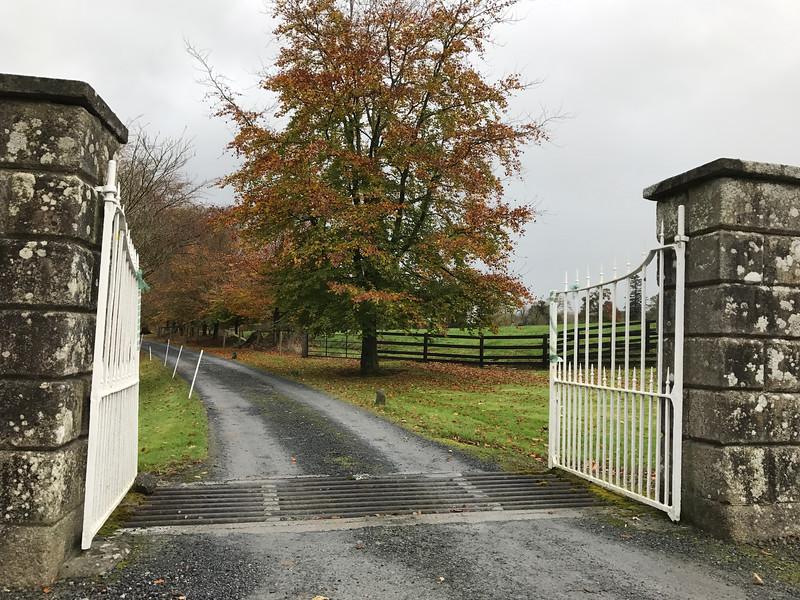Ballyduff near Thomastown.