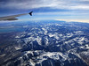 December 20, we're heading over the Sierra Nevada, past Mono Lake, off to Europe