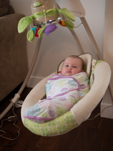In the swing, for a nap