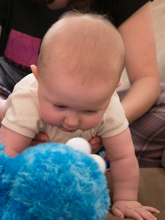 Hannah meets Cookie Monster (puppet)