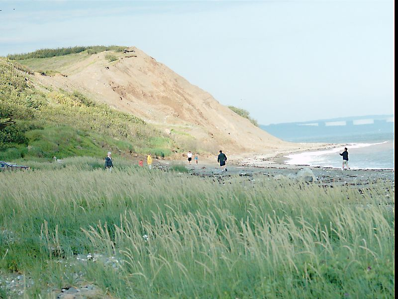 IRVING NATURE PARK-BINOCAM- A WALK TOWARDS SHELDON POINT BEACH