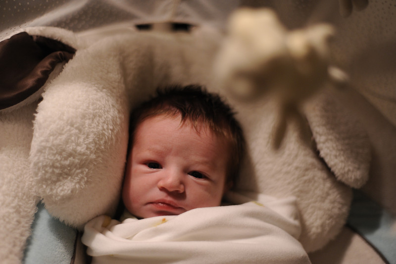 Jack in his swing, March 10, 2012.