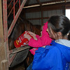 Stephanie helping Claire feed the horses.