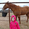 Claire with the horses at Stephanie's house.