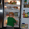 Brady thought the fridge looked like a fun place to play.