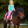 Horses 0021