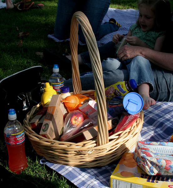 the picnic basket... we all were keeping an eye out for yogi bear the whole time.