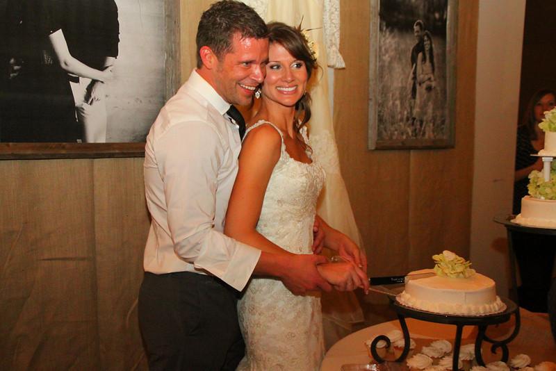 Beautiful couple cutting the cake