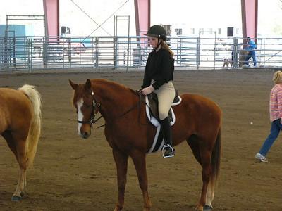 jenni horse show