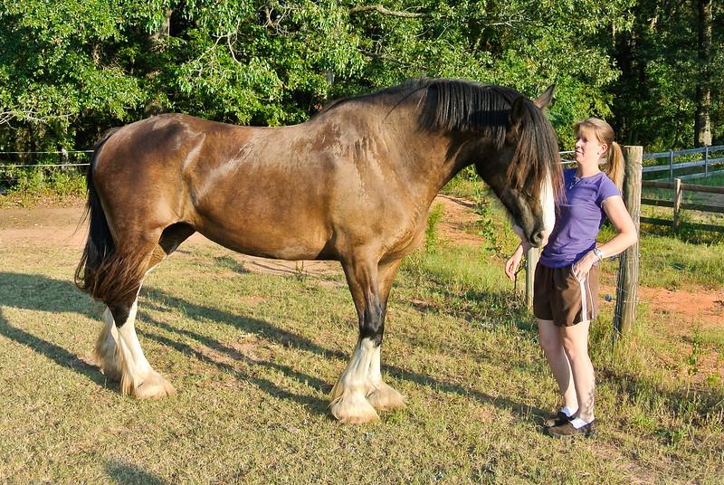 Jenny and Chad Farm Family 2015-112