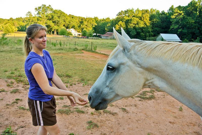 Jennys Horses-103
