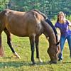 Jennys Horses-106