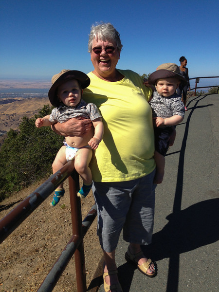 On Top of Mt. Diablo with Two Babies