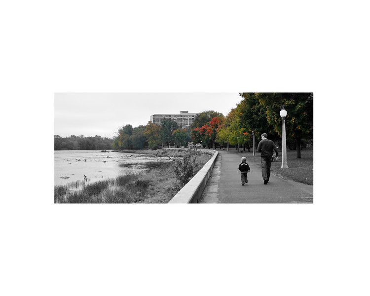 fall colours 8x10