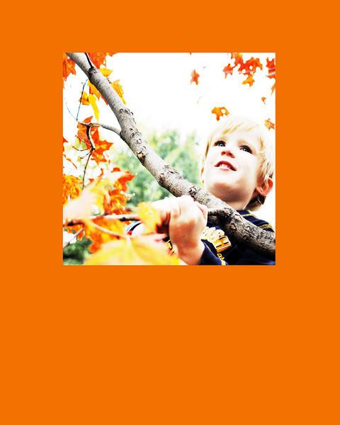leaf glow orange 8x10