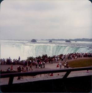 1980_1981_MD_FLA0000350A