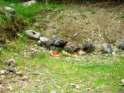 We use environmentally-friendly targets -- fruit.