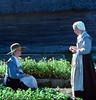 Plymouth Plantation (Sep '87)