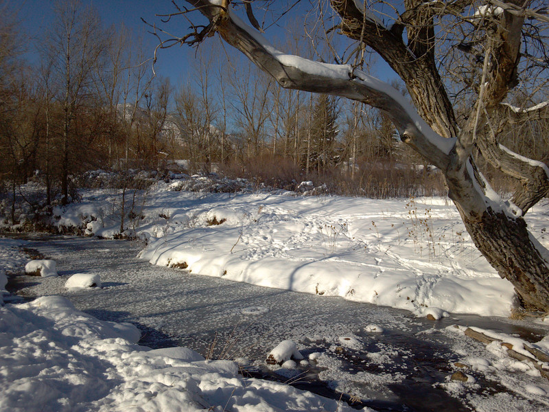 South Boulder Creek in the snow. , South Boulder Creek in the snow.