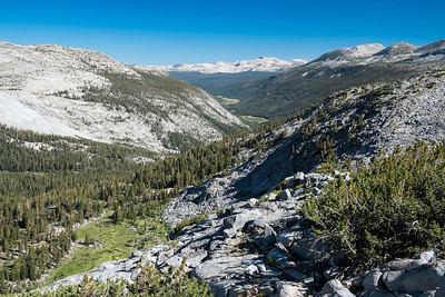 A last look at the Tuolumne River and Lyell Canyon before we leave Yosemite