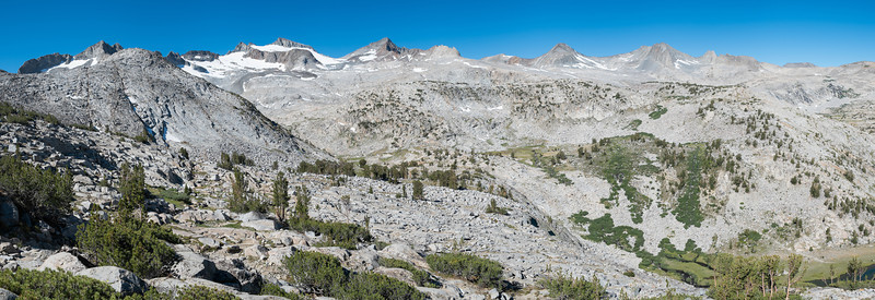 A Lyell Glacier panorama