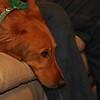 Annie watching Jake