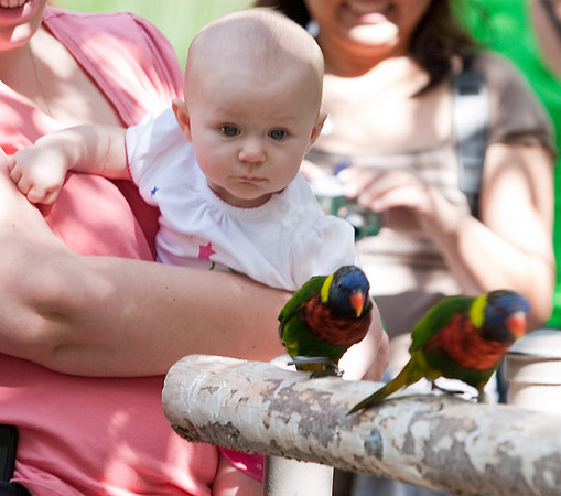 Elizabeth Ann McChesney and her first outing at Wild Animal Park.