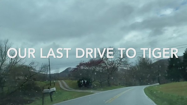 Our last drive to Tiger