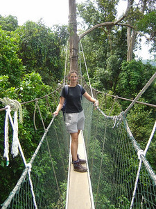 canopy walkway 30m high and 400m long...pretty awesome!