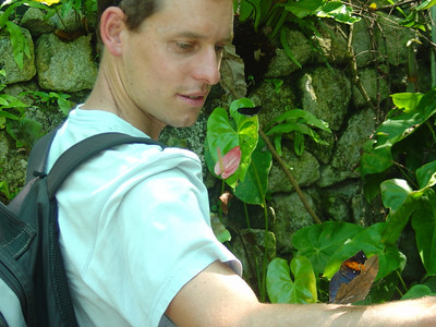 butterfly park with a leaf butterfly!