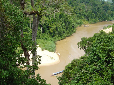views down to the river from the canopy walkway