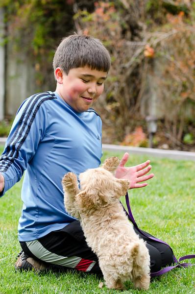 Jumbo tries to high-five Ethan.