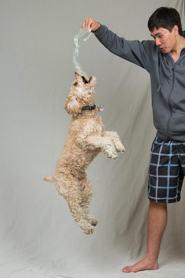 JumpingJumbo