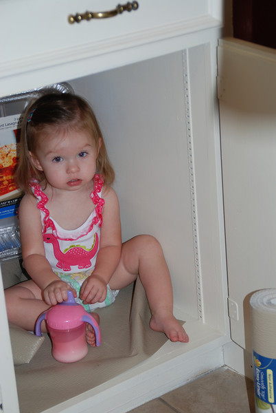 Hanging out in the kitchen cabinet...her new hiding spot.