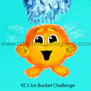 KCicebucket1