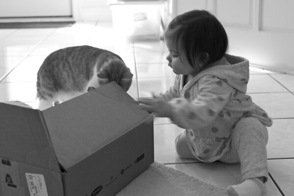 Karlie_and_the_box