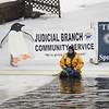 Penguin Plunge 2013