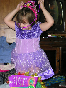 Purple princess dress.
