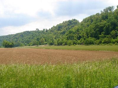 More beautiful fields