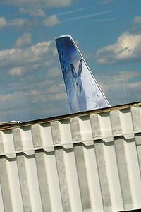 KK's plane back to Philadelphia - it's a bunny!