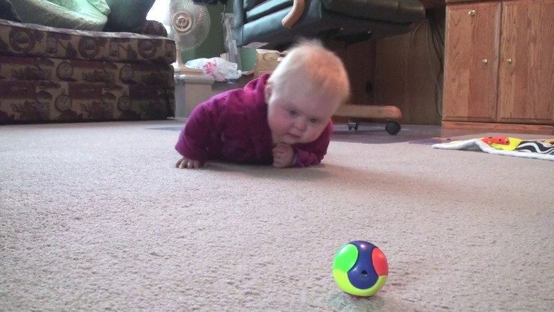 It's not the first time Katie has army crawled, but it's the first time we caught it on video.  And, she has definitely gotten much more mobile in the last few days.  Not coincidentally, the first baby gate got installed today at the bottom of our stairs.  Go Katie!