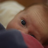 Katie peeking