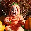 Pumpkins <br /> Katie