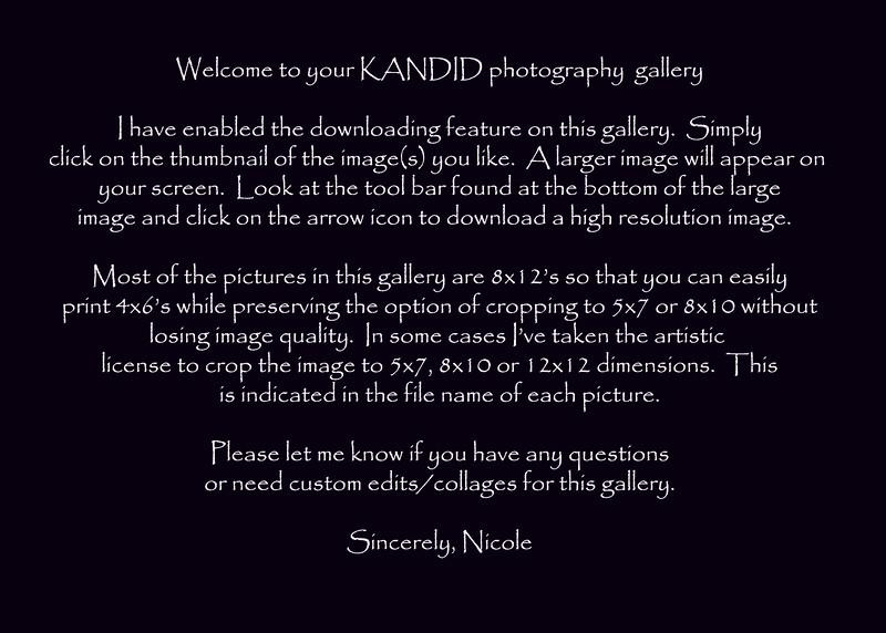 gallery description