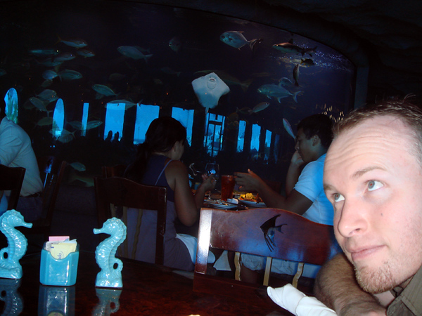 Inside Aquarium.  The view from our table.  The tank behind Brian is 50k gallons and has 3 species of shark.  I was SERIOUSLY annoying people with my flash lol.