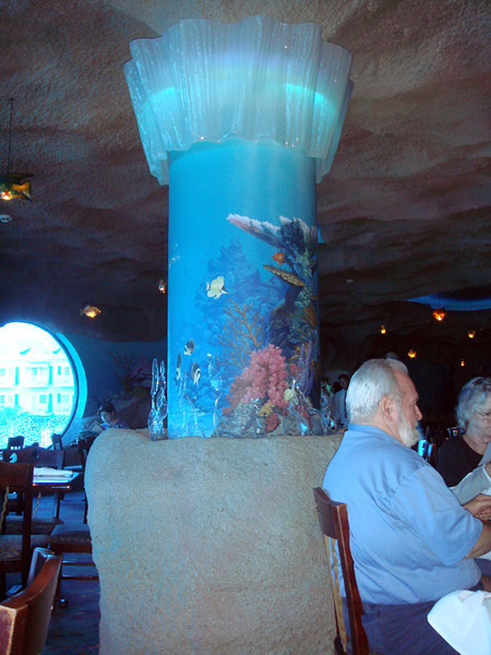 Inside Aquarium.  The view from our table.  Some of the decor.